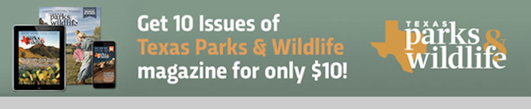 Subscribe to Texas Parks and Wildlife