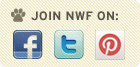 Join NWF on Facebook, Twitter, and Pinterest!