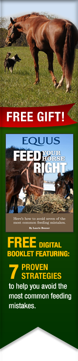FREE GIFT - Feed Your Horse Right